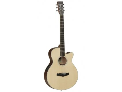TW1 elektroakustická kytara