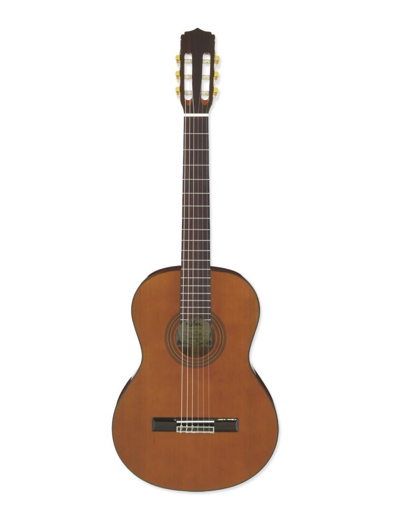 Aria A-20 - klasická kytara