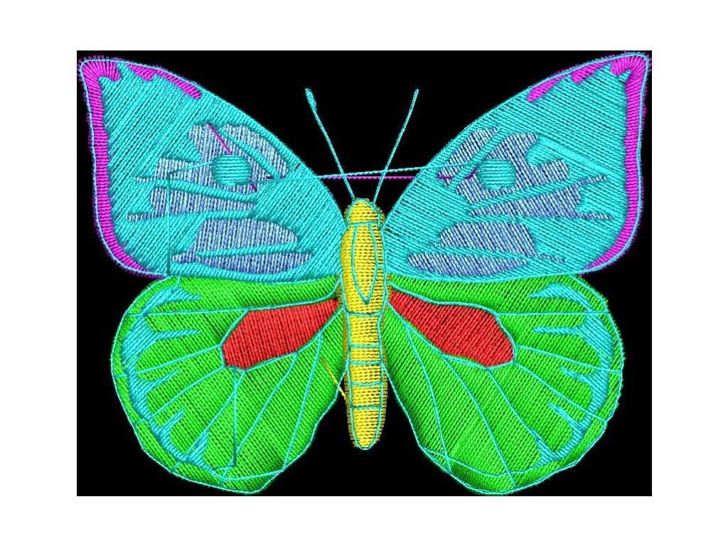 Motyl 70x55