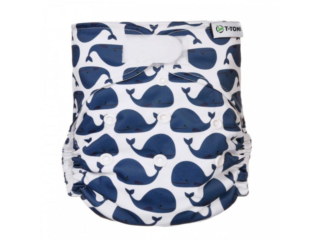 AIO suchy zip, whales 1000x1000