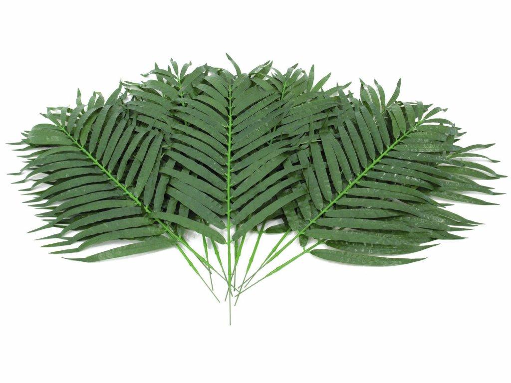 Kokosový palmový list krátký, 80 cm, 12 ks