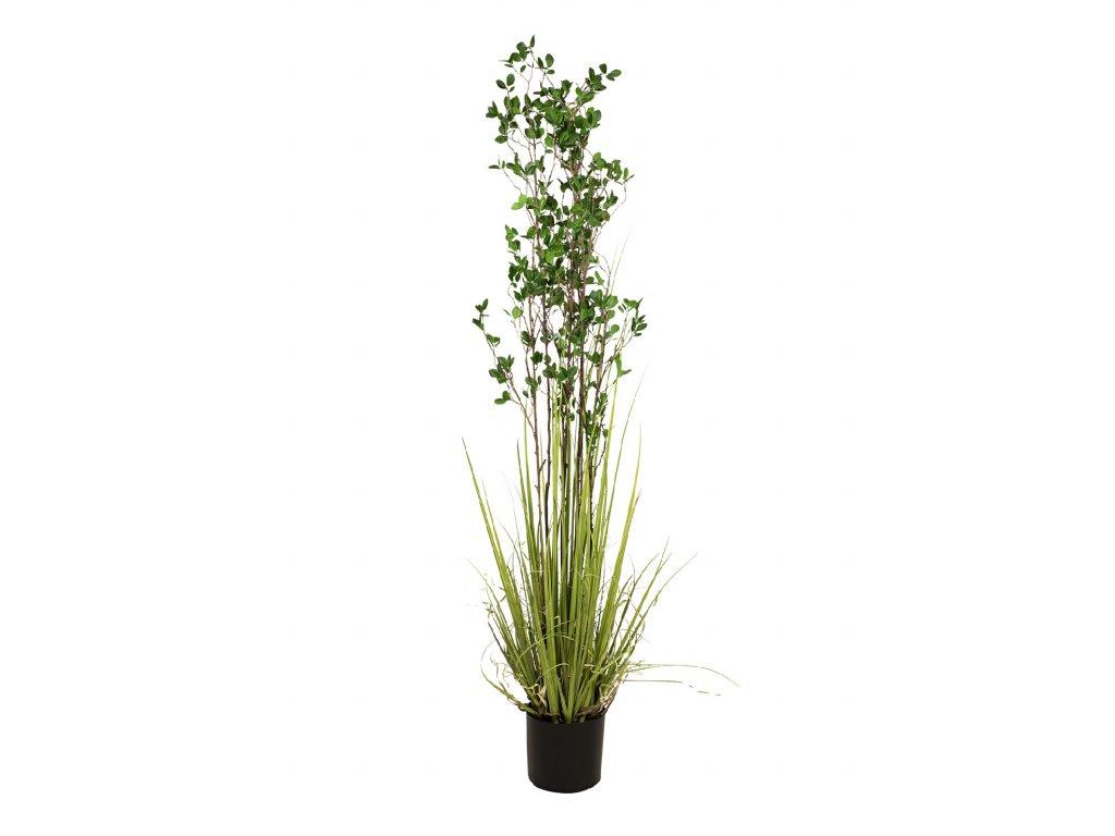 Zelený keř s trávou, 182 cm