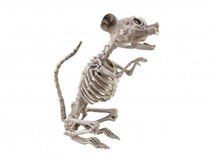 Halloween kostlivec krysy