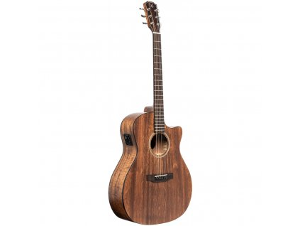 James Neligan DOV-ACFI, elektroakustická kytara typu Auditorium