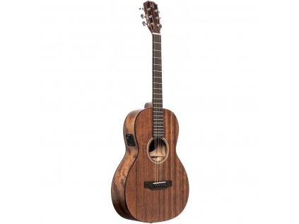 James Neligan DOV-PFI, elektroakustická kytara typu Parlor
