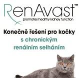 RenAvast