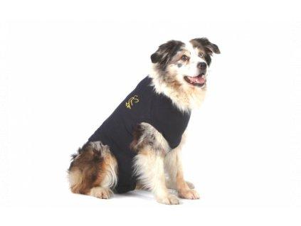 MPS ( L ) Dog