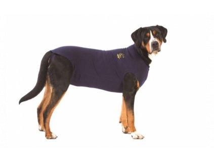 MPS ( XXL ) Dog