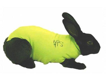 MPS ( S ) Rabbit