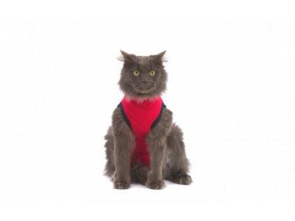MPS ( XXXS ) Cat