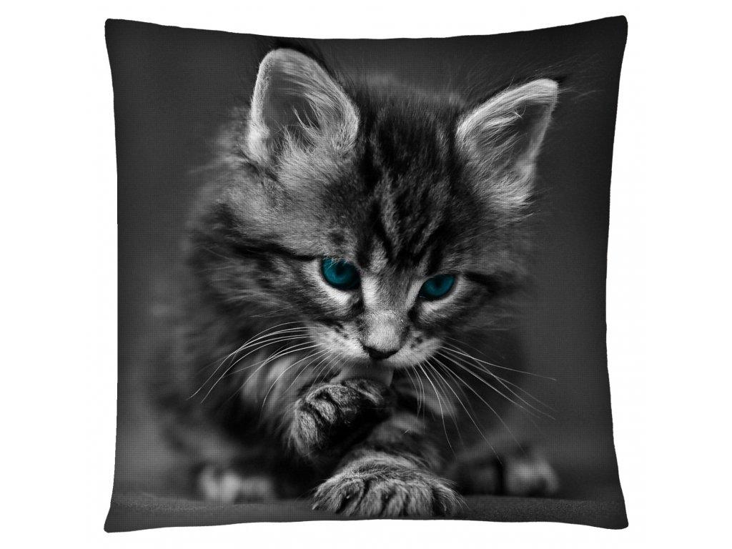 Polštář s motivem kočky 26 Mybesthome 40x40 cm