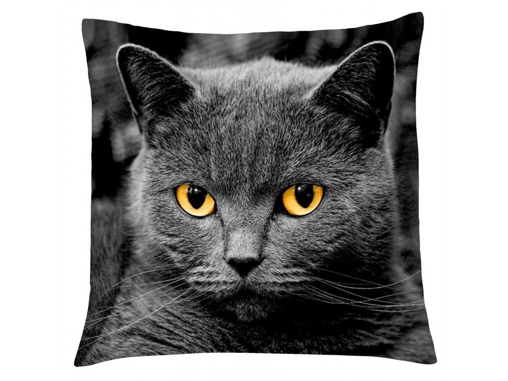 Polštář s motivem kočky 02 Mybesthome 40x40 cm
