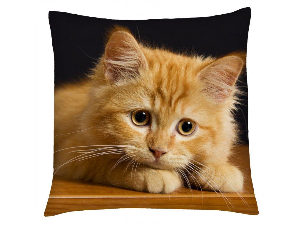 Polštář s motivem kočky 05 Mybesthome 40x40 cm