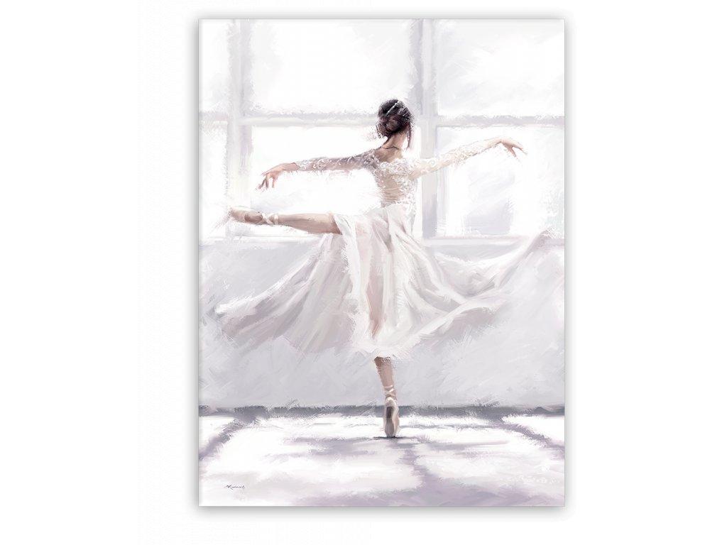 Obraz na plátně DANCE 03 BALETKA 60x80 cm Styler
