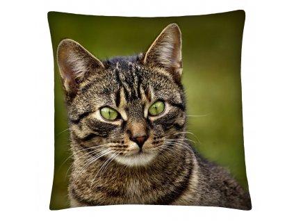 Polštář s motivem kočky 19 Mybesthome 40x40 cm