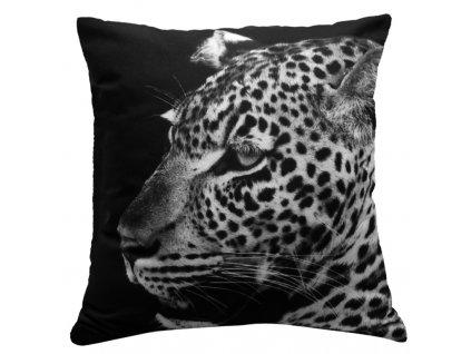 Polštář JAGUÁR MyBestHome 40x40cm fototisk 3D motiv jaguár na černém pozadí