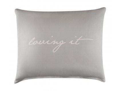 Polštář s výplní LOVING 50x60 cm, světle šedá/růžová, 100% bavlna Mybesthome