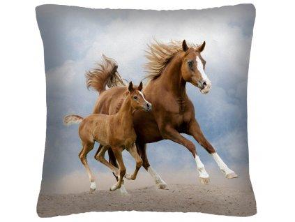 Polštář s motivem koně 32 Mybesthome 40x40 cm