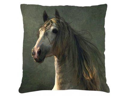Polštář s motivem koně 22 Mybesthome 40x40 cm
