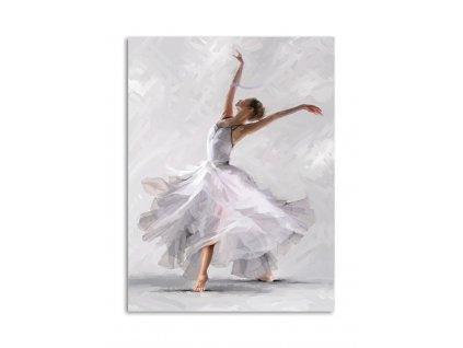 Obraz na plátně DANCE 02 60x80 cm Styler