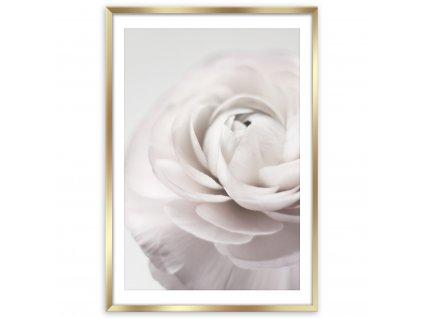 Obraz v rámu PETALS 50x70 cm Styler