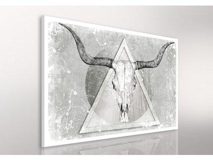 Obraz na plátně BUFFALO B různé rozměry Ludesign