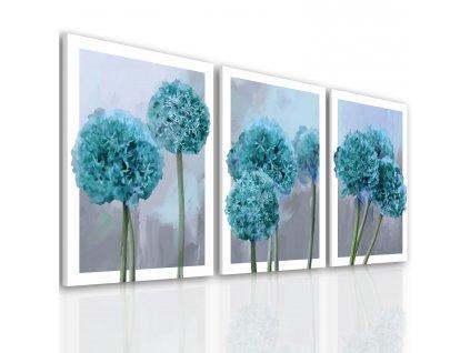Obraz na plátně GARLIC FLOWER A set 3 kusy různé rozměry Ludesign