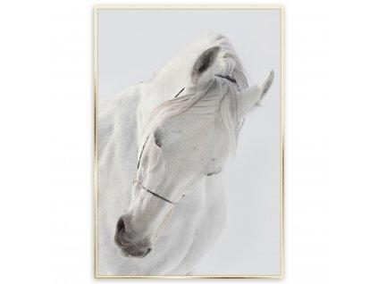 Obraz v rámu SHY 50x70 cm Styler