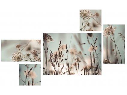 Obraz na na plátně DANDELION vícedílný 70x150 cm Styler