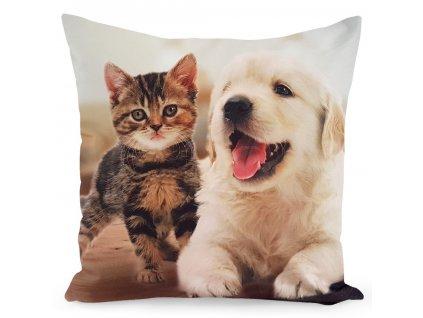 Polštář DOG AND CAT 40x40cm Mybesthome