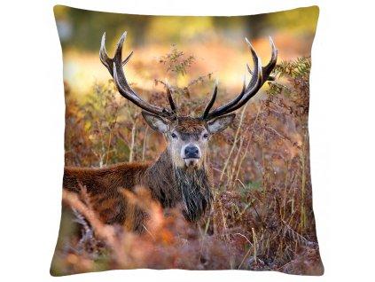 Polštář animal 63 - JELEN II. Mybesthome 40x40 cm