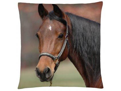 Polštář s motivem koně 24  Mybesthome 40x40 cm