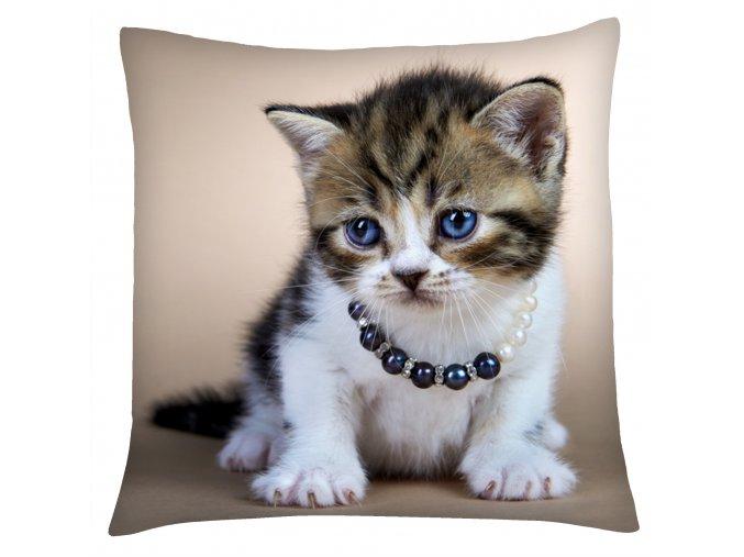 Polštář s motivem kočky 07 Mybesthome 40x40 cm