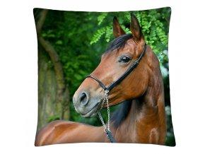 Polštář s motivem koně 15 Mybesthome 40x40 cm