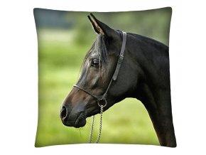 Polštář s motivem koně 17 Mybesthome 40x40 cm