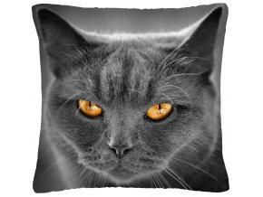 Polštář s motivem kočky 48 Mybesthome 40x40 cm