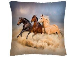 Polštář s motivem koně 29 Mybesthome 40x40 cm