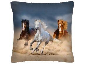 Polštář s motivem koně 30 Mybesthome 40x40 cm