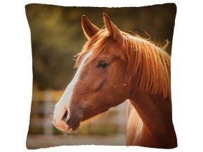 Polštář s motivem koně 36 Mybesthome 40x40 cm