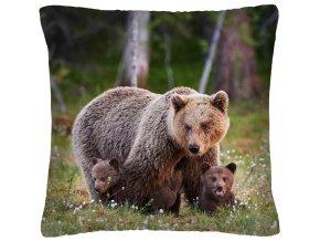 Polštář animal 07 - MEDVĚDI Mybesthome 40x40 cm