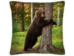 Polštář animal 10 - MEDVĚD Mybesthome 40x40 cm