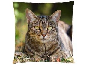 Polštář s motivem kočky 33 Mybesthome 40x40 cm