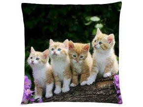 Polštář s motivem kočky 36 Mybesthome 40x40 cm