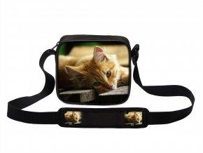 Taška přes rameno MINI kočky 16 MyBestHome 19x17x6 cm