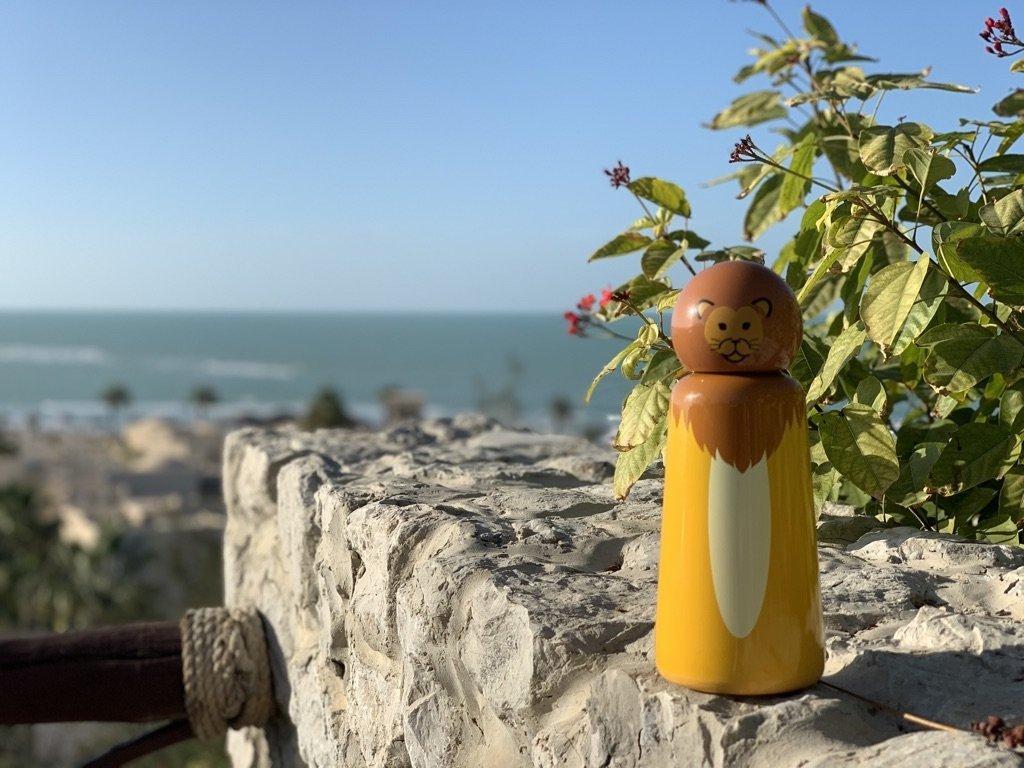 Termo fľaša LUND LONDON Skittle Bottle Mini 300ml - Lion