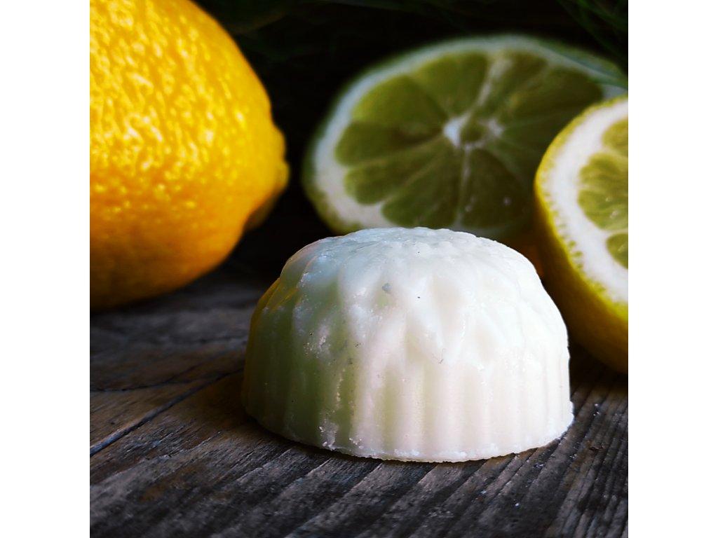 Citron tuhý kondicionér na vlasy v dóze