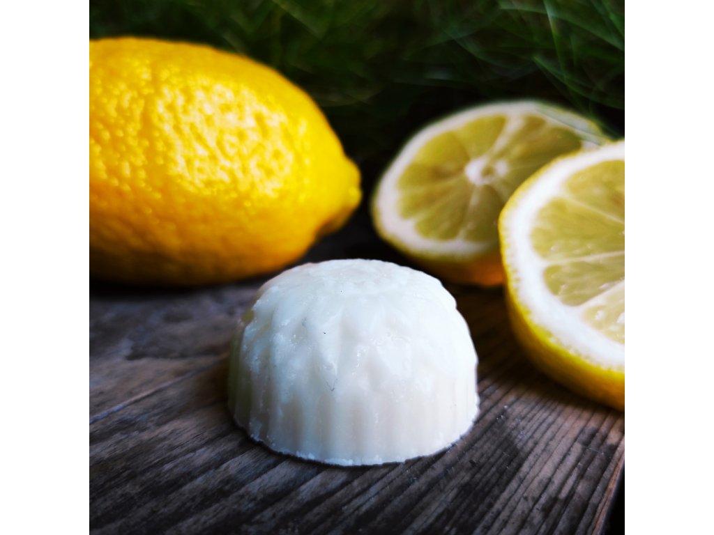 Citron tuhý kondicionér  na vlasy v sáčku
