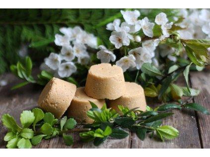 Meruňka a hedvábí šampuk s kondicionérem 90 g