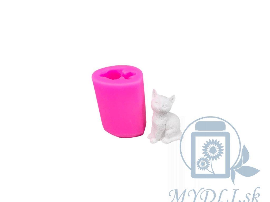 mačka silikónová forma