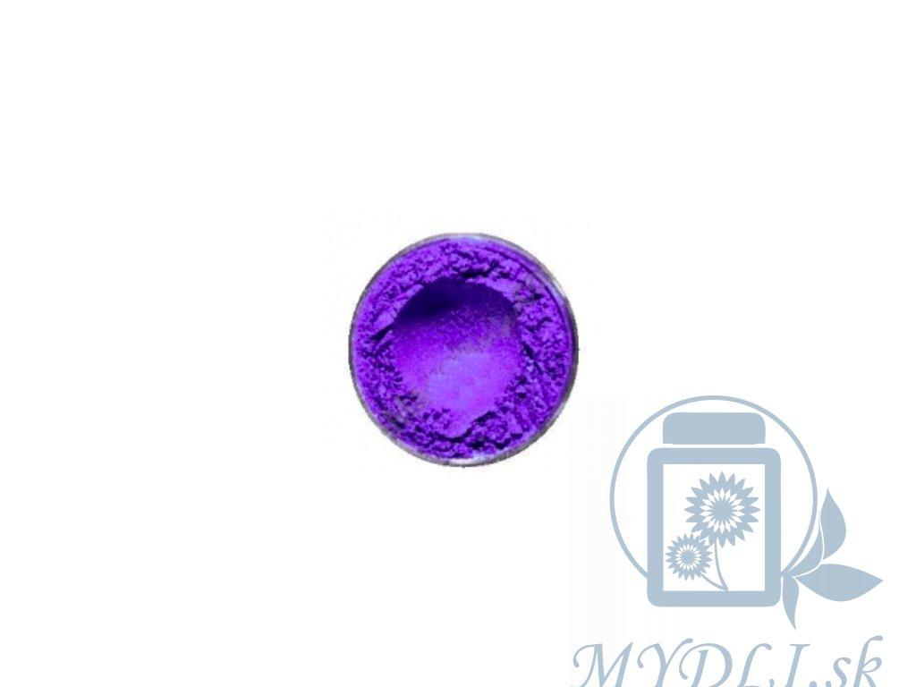 fialová mica